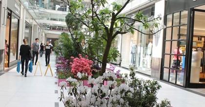 Mis kokulu çiçekleriyle bahar Palladium'da yaşanır!