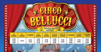 Hayvan Dostu Sirk Circo Belluci Starcity Outlet'te!