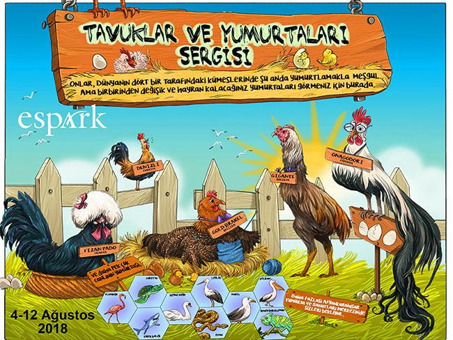 Tavuklar ve Yumurtaları Sergisi ilk kez Eskişehir Espark AVM de